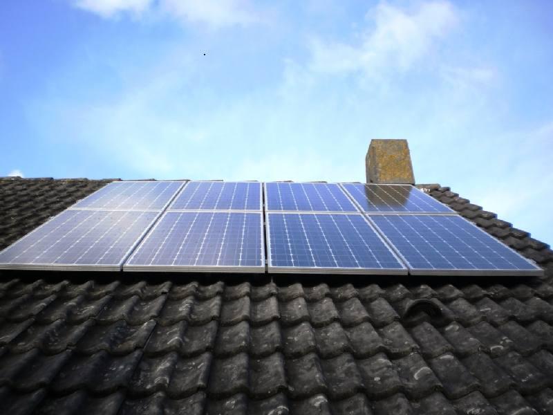 Foto zonnepanelen weegbree