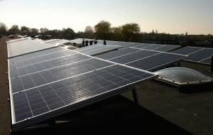 Q Cells Q.plus zonnepanelen, zonnepanelen den haag, zonnepanelen kopen, zonnepanelen kwaliteit, zonnepanelen collectief